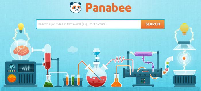 Blog Name Generator Panabee